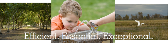 Efficient. Essencial. Exceptional