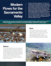 Modern Flows for the Sacramento Valley